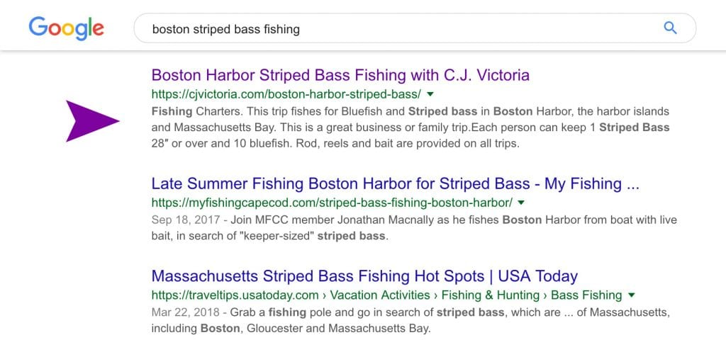SEO results for Boston Striped Bass Fishing