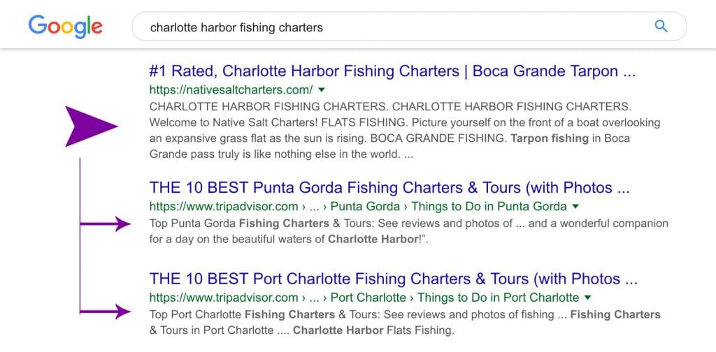 Results of a fishing charter SEO campaign